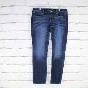 American Eagle Distressed Dark Stretch Skinny Jean